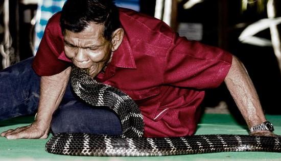 قرية الكوبرا التايلندية أسرة تعيش