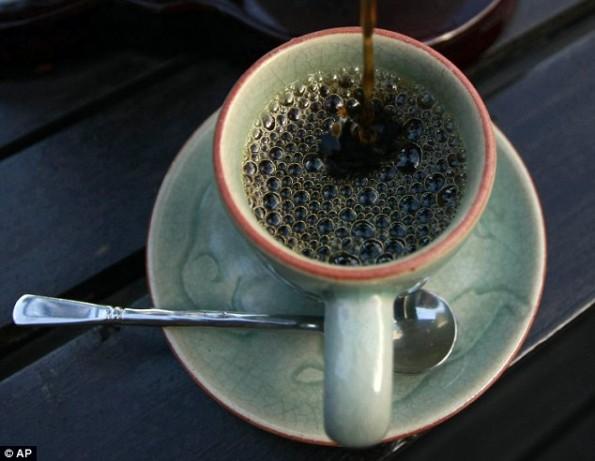 فيديو أغلى أنواع القهوة استخراجها